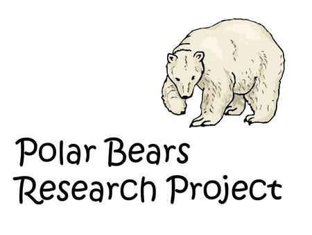 Polar Bears Research Project. What do you know about polar bears? 1. 2. 3. 4. 5. 6.