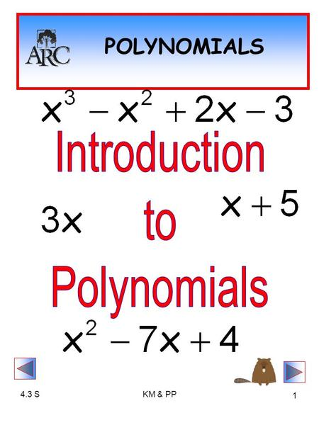 4.3 Introduction to Polynomials