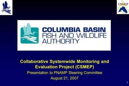 1 Collaborative Systemwide Monitoring and Evaluation Project (CSMEP) Presentation to PNAMP Steering Committee August 21, 2007.