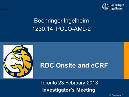 Investigator's Meeting