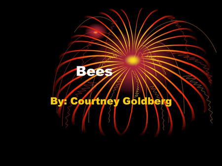 Bees By: Courtney Goldberg. Do you want to learn more about bees? Well if you do read on your going to get freaked out!