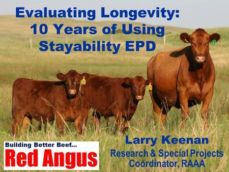 Evaluating Longevity: 10 Years of Using Stayability EPD Larry Keenan Research & Special Projects Coordinator, RAAA.