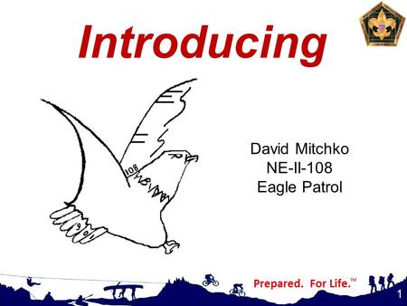 Introducing 1 David Mitchko NE-II-108 Eagle Patrol.