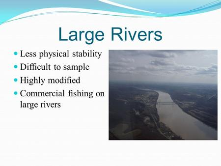 Large Rivers Less physical stability Difficult to sample Highly modified Commercial fishing on large rivers.