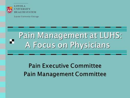 Pain Management at LUHS: A Focus on Physicians Pain Executive Committee Pain Management Committee Loyola University Chicago LOYOLA UNIVERSITY HEALTH SYSTEM.
