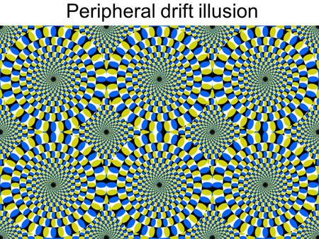 Peripheral drift illusion. Multiple views Hartley and Zisserman Lowe stereo vision structure from motion optical flow.