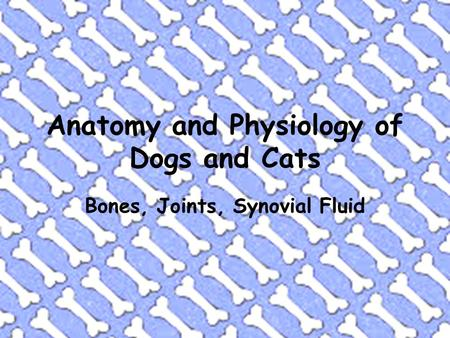 Anatomy and Physiology of Dogs and Cats Bones, Joints, Synovial Fluid.
