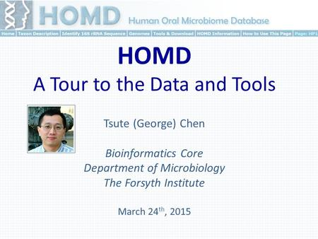Tsute (George) Chen Bioinformatics Core Department of Microbiology The Forsyth Institute March 24 th, 2015 HOMD A Tour to the Data and Tools.