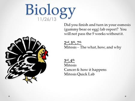 Biology 11/26/13 Did you finish and turn in your osmosis (gummy bear or egg) lab report? You will not pass the 9 weeks without it. 2 nd, 5 th, 7 th Mitosis.