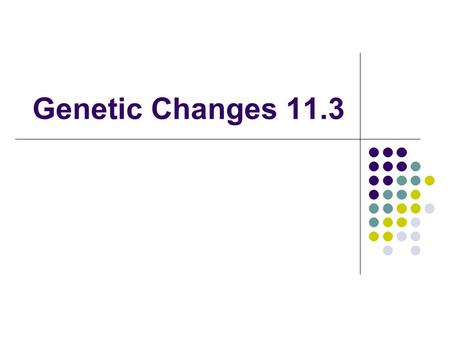Genetic Changes 11.3.