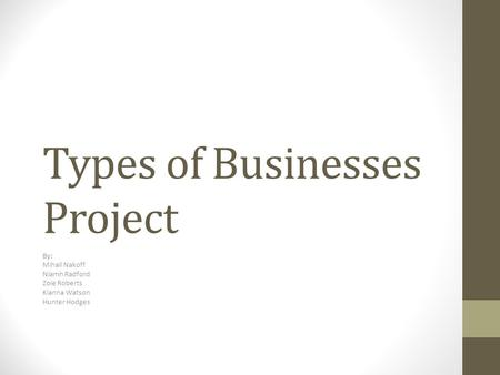 Types of Businesses Project By: Mihail Nakoff Niamh Radford Zoie Roberts Kianna Watson Hunter Hodges.
