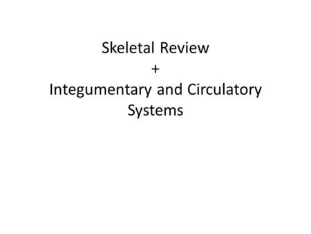 Skeletal Review + Integumentary and Circulatory Systems.