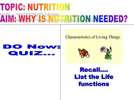 NUTRITION A life function When organisms take in & use nutrients needed for energy & all life processes.