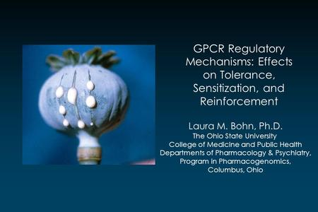 GPCR Regulatory Mechanisms: Effects on Tolerance, Sensitization, and Reinforcement Laura M. Bohn, Ph.D. The Ohio State University College of Medicine and.