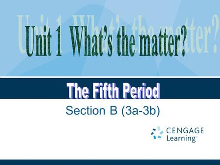 Section B (3a-3b). Unit 1: What's the matter? Period 5.