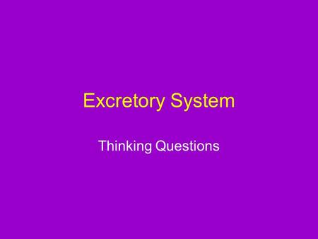 Excretory System Thinking Questions. Describe the functions of a person's urinary system.