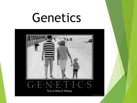 Genetics. New Learning Goal:  To describe how genetics are passed from one generation to another.