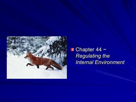 Chapter 44 ~ Regulating the Internal Environment.
