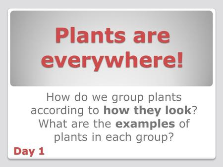 Plants are everywhere! How do we group plants according to how they look? What are the examples of plants in each group? Day 1.