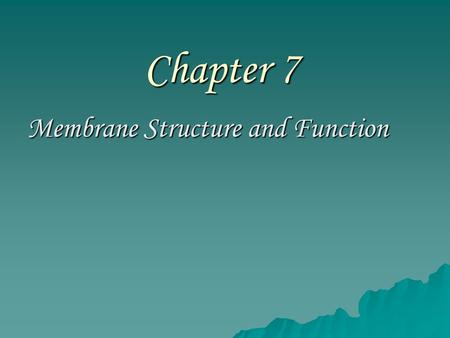 Chapter 7 Membrane Structure and Function. –The plasma membrane is located at the boundary of every cell –It functions as a selective barrier –It allows.
