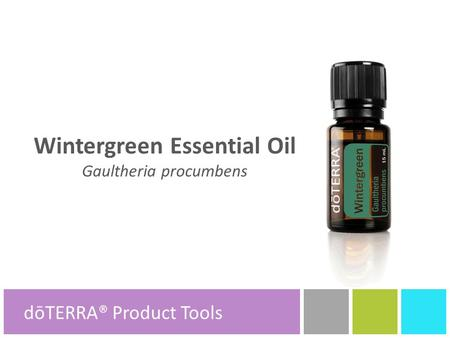 Wintergreen Essential Oil Gaultheria procumbens dōTERRA® Product Tools.