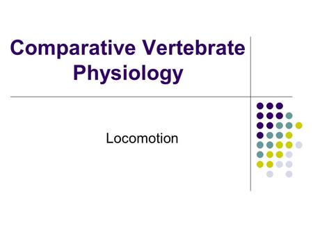 Comparative Vertebrate Physiology Locomotion. Energetics: What does it cost? Smaller animals show higher rates of limb stride or wing motion, thus higher.