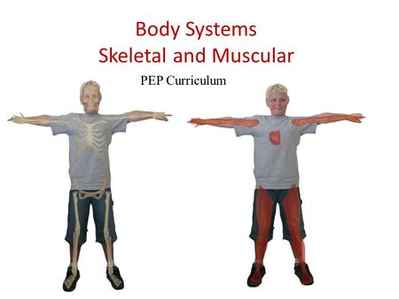 Body Systems Skeletal and Muscular PEP Curriculum.