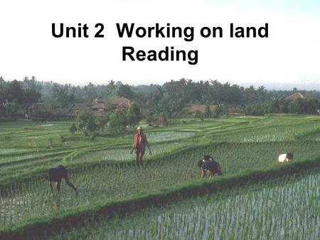 Unit 2 Working on land Reading. A poem Farmers weeding at noon, Sweat down the field soon. Who knows food on a tray, Due to their toiling day.