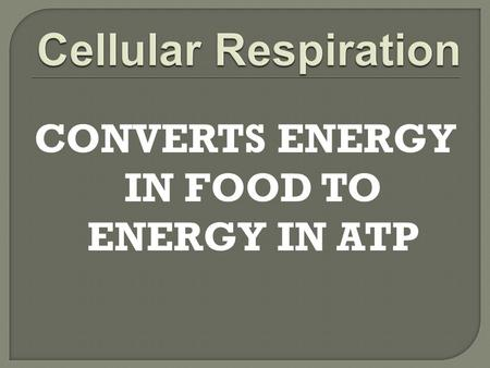 CONVERTS ENERGY IN FOOD TO ENERGY IN ATP.  Involves over 25 chemical reactions  Occurs in cytoplasm and mitochondria  Can be divided into three main.