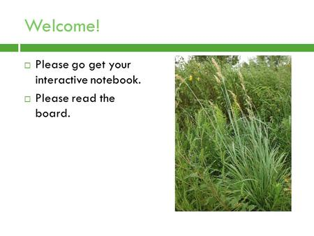 Welcome!  Please go get your interactive notebook.  Please read the board.