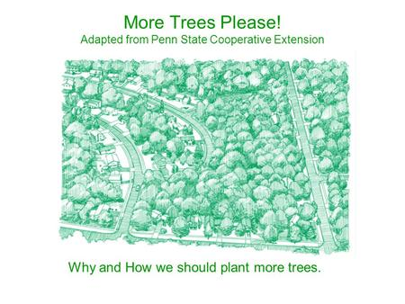 More Trees Please! Adapted from Penn State Cooperative Extension
