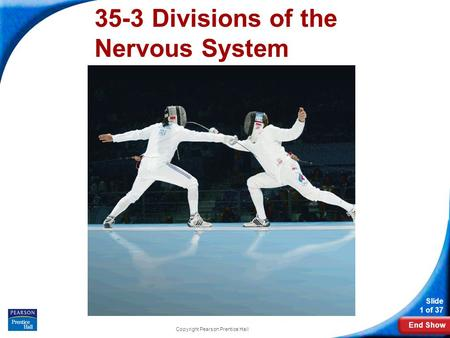 End Show Slide 1 of 37 Copyright Pearson Prentice Hall 35-3 Divisions of the Nervous System.