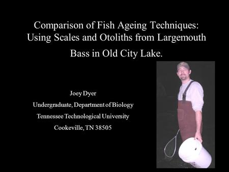 Comparison of Fish Ageing Techniques: Using Scales and Otoliths from Largemouth Bass in Old City Lake. Joey Dyer Undergraduate, Department of Biology Tennessee.