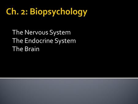 The Nervous System The Endocrine System The Brain.