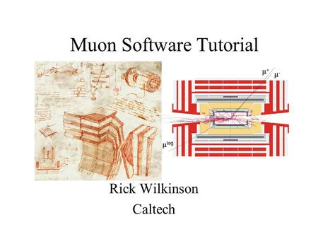 Muon Software Tutorial Rick Wilkinson Caltech. The Basics Q: Is there a Muon class? A : No. A muon is just a RecTrack, the same class as the Tracker uses.
