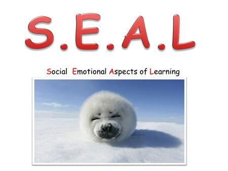Social Emotional Aspects of Learning. Resource needed! Paper Pencils Colouring pencil/pens.