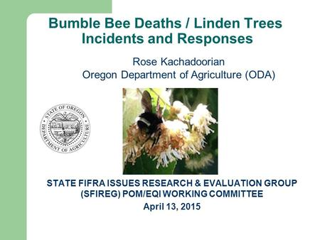 Bumble Bee Deaths / Linden Trees Incidents and Responses STATE FIFRA ISSUES RESEARCH & EVALUATION GROUP (SFIREG) POM/EQI WORKING COMMITTEE April 13, 2015.