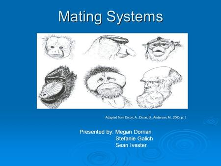 Mating Systems Adapted from Dixon, A., Dixon, B., Anderson, M., 2005, p. 3 Presented by: Megan Dorrian Stefanie Galich Sean Ivester.