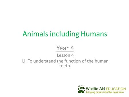 Animals including Humans Year 4 Lesson 4 LI: To understand the function of the human teeth.