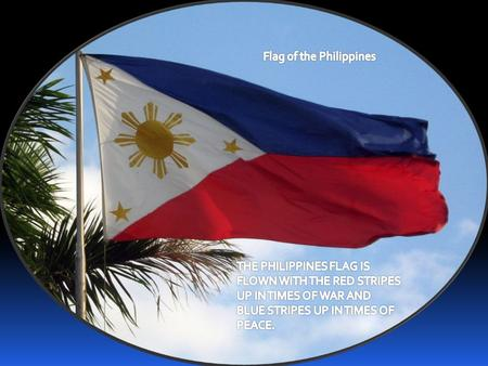 Winter Olympics in the Philippines!  The Philippines is the first nation in the tropics to ever participate in the Winter Olympics Games.  The Philippines.