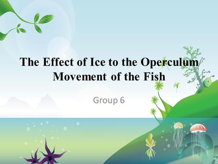 The Effect of Ice to the Operculum Movement of the Fish Group 6.