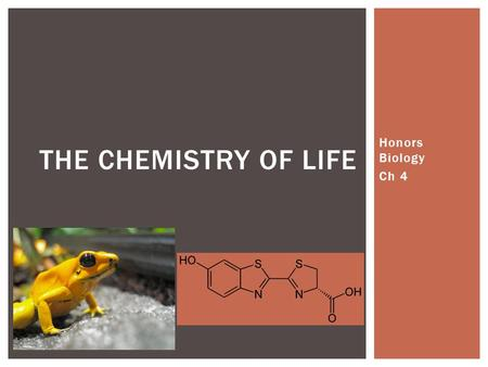 Honors Biology Ch 4 THE CHEMISTRY OF LIFE.  M1: Ecology  Study of large scale stuff  M2: Molecules to Organisms  Study of really small scale stuff.
