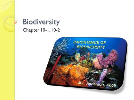 Biodiversity Chapter 10-1, 10-2. Biodiversity Objectives 11 Ch. 10-1 1. Describe the diversity of species types on Earth, relating the differences between.