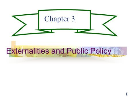 Externalities and Public Policy