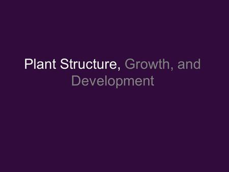 Plant Structure, Growth, and Development. Plant hierarchy: –Cells –Tissue: group of similar cells with similar function: Dermal, Ground, Vascular –Organs: