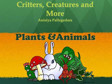Critters, Creatures and More Anisiya Pallegedara Plants &Animals.