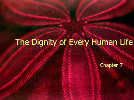 "The Dignity of Every Human Life Chapter 7. Silently Read ""Will I live to be Seventeen"" page 92 In small groups discuss the Discussion questions on the."