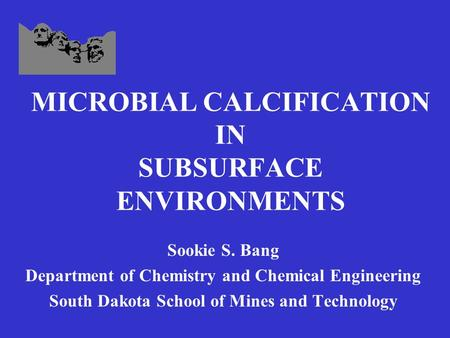 MICROBIAL CALCIFICATION IN SUBSURFACE ENVIRONMENTS Sookie S. Bang Department of Chemistry and Chemical Engineering South Dakota School of Mines and Technology.
