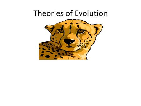 Theories of Evolution. Jean Baptiste Lamarck (1744 – 1829) – One of the first to propose a theory of evolution. – Observed changes in the fossil record.