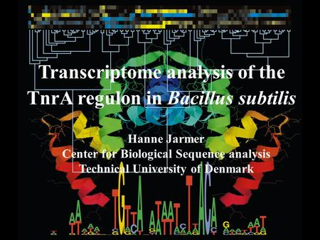 Transcriptome analysis of the TnrA regulon in Bacillus subtilis Hanne Jarmer Center for Biological Sequence analysis Technical University of Denmark.